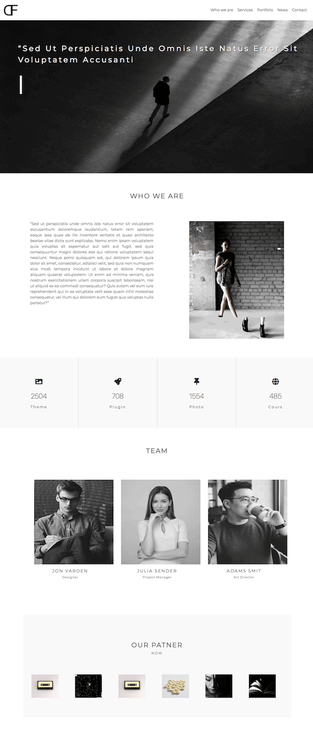 wordpress-theme-avik-4