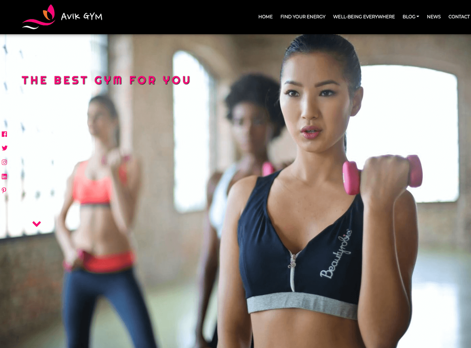 wordpress-theme-avik-gym